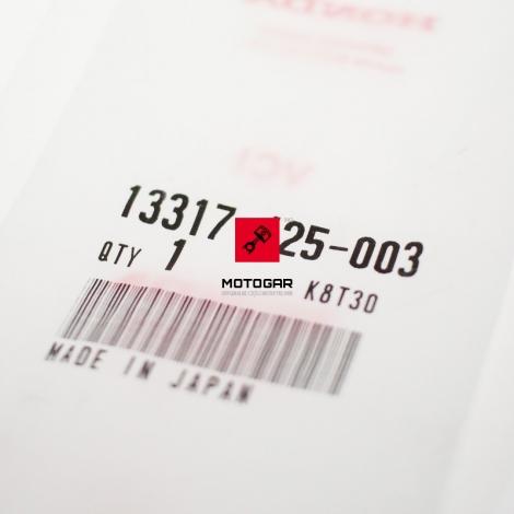 13317425003