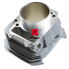 Cylinder Suzuki DR 650 XF 650 Freewind [OEM: 1121132E020F0]