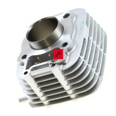Cylinder Kawasaki Eliminator BN 125 1998-2003 [OEM: 981111081]